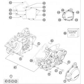 Carter moteur ( Husqvarna TE 125 2016 )