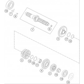Transmission, arbre primaire ( KTM 250 EXC-F 2019 )