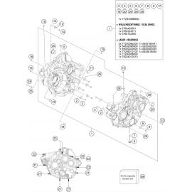 Carter moteur ( KTM 250 EXC-F-Six-Days 2020 )