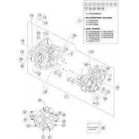 Carter moteur ( KTM 350 EXC-F-Six-Days 2020 )