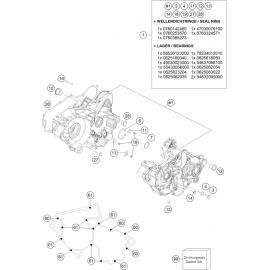 Carter moteur ( KTM 300 EXC-TPI-Six-Days 2021 )