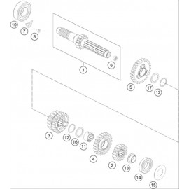 Transmission, arbre primaire ( KTM 250 EXC-F 2021 )