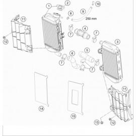 Refroidissement ( KTM 85 SX-19-16 2019 )