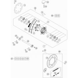 Roue arrière ( KTM 125 XC-W 2019 )