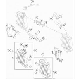Refroidissement ( KTM 65 SX 2020 )