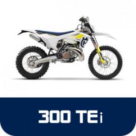 TE 300