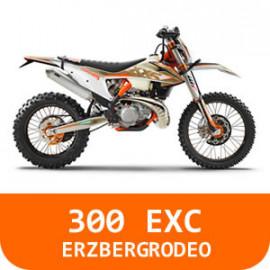 300 EXC-TPI-ERZBERG