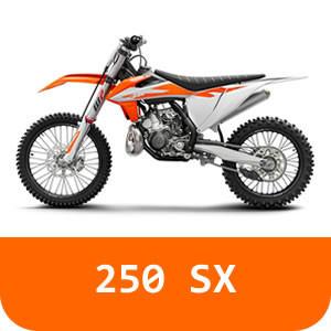 250 SX