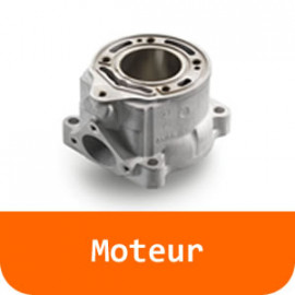 Moteur - 390 DUKE-Orange