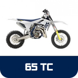 TC 65
