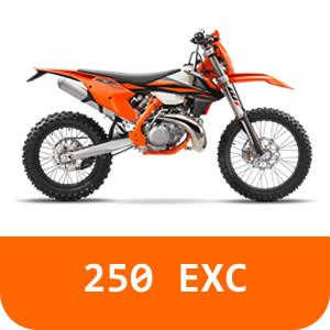 250 EXC-TPI