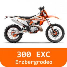 300 EXC-TPI-Erzbergrodeo