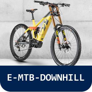 E-MTB-DOWNHILL