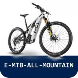 E-MTB-ALL-MOUNTAIN